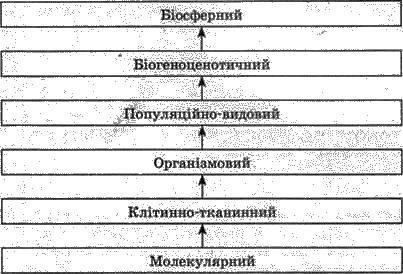 Основні ознаки живого організму