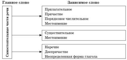 Структура и виды словосочетаний по типу подчинительной связи