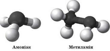 Аміни, їхній склад, хімічна, електронна будова, класифікація. Аміни як органічні основи. Взаємодія амінів з водою й кислотами, горіння