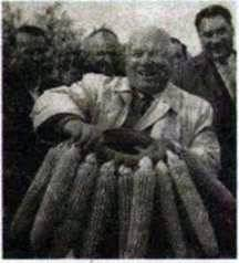 Аграрна політика в другій половині 1950 х