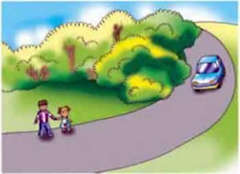 Дорожньо транспортні пригоди (ДТП)