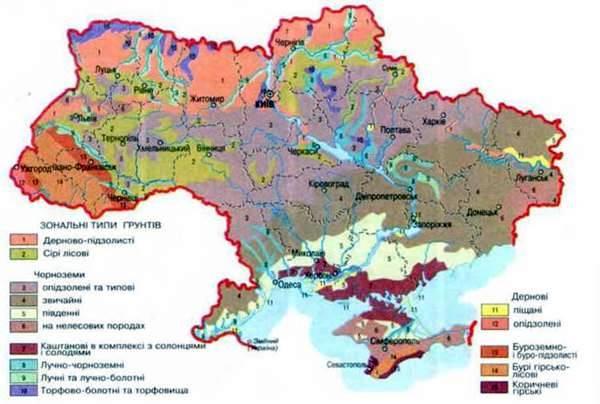 Основні типи грунтів. Земельні ресурси України | Географія